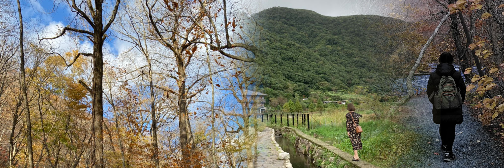 台灣基督徒女性靈修協會109年靈修之旅 – 冬季在以馬忤斯遇見主-陪妳、培力,與祂同行