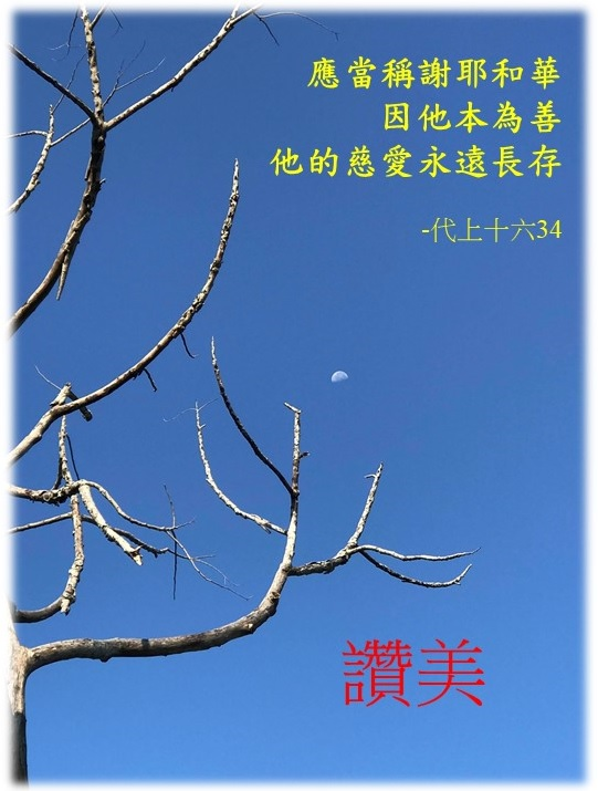 Read more about the article 讚美