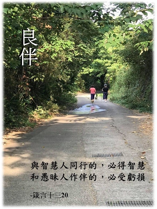 Read more about the article 良伴